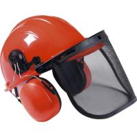 Rental store for CHAINSAW SAFETY KIT HARD HAT in Chicago IL